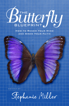 The Butterfly Blueprint Cover 5a